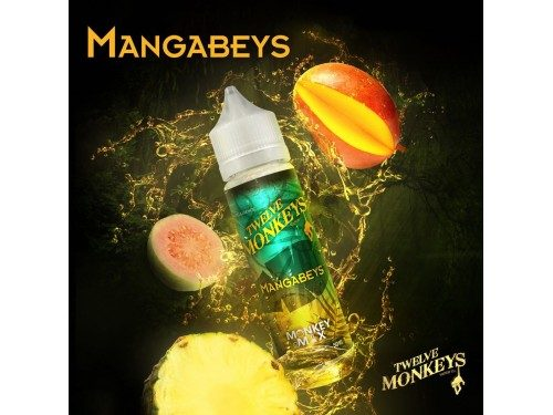 Twelve Monkeys-Mangabeys